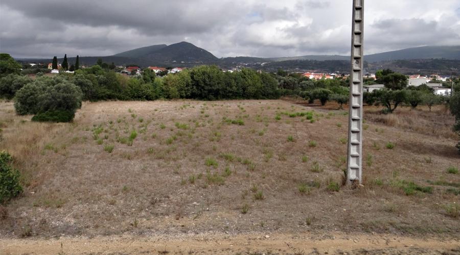 Terreno situado na freguesia dos Bugalhos